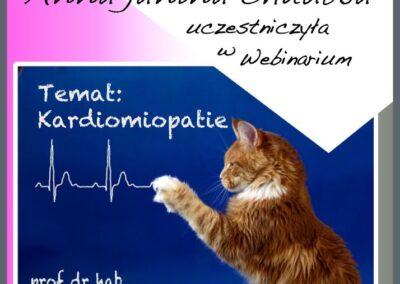 Certyfikat Kardiomiopatie
