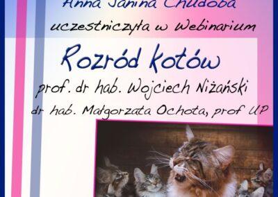 Certyfikat Rozród Kotów