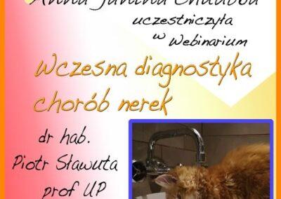 Certyfikat Wczesna diagnostyka nerek